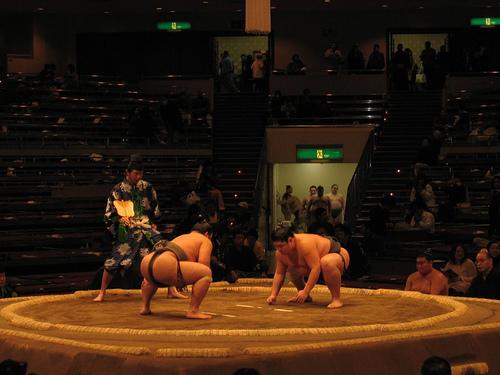 Tournoi de sumo au Japon